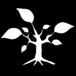 ayuda rehabilitacion energetica biomasa