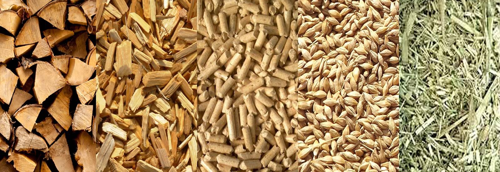 biomasa tipos calefaccion acs vivienda