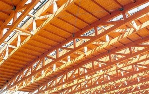 bambu estructural construccion sostenible