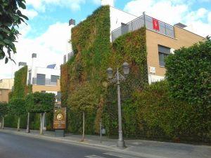 sostenibilidad fachada vegetal