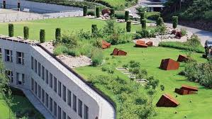 cubiertas vegetales intensiva edificio eficiente
