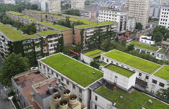 cubiertas verdes vegetales eficiencia