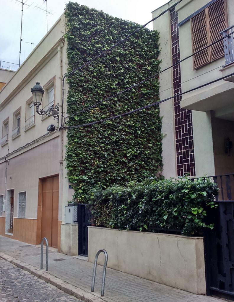 fachada vegetal elementos componen beneficios
