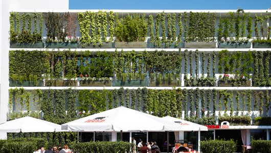 fachada vegetal sistema básico