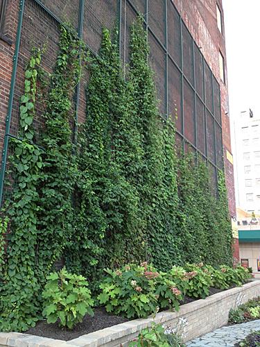 fachada verde altura fachada todo edificio
