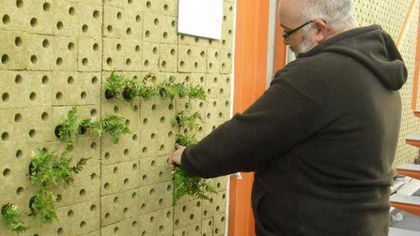 fachada vegetal elemento portante