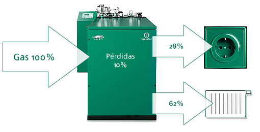 micro cogeneracion eficiencia energetica