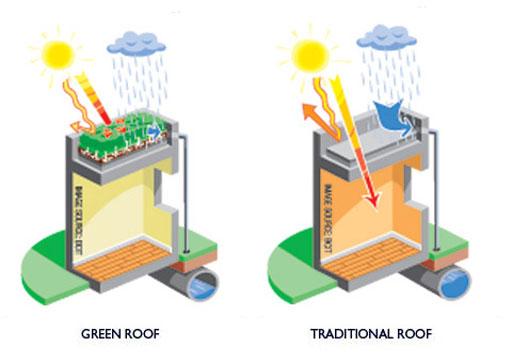 eficiencia energética cubiertas vegetales
