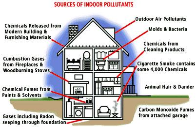 viviendas sostenibles sanas sin quimicos