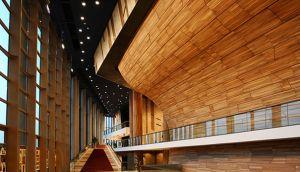 materiales rapidamente renovables bambú