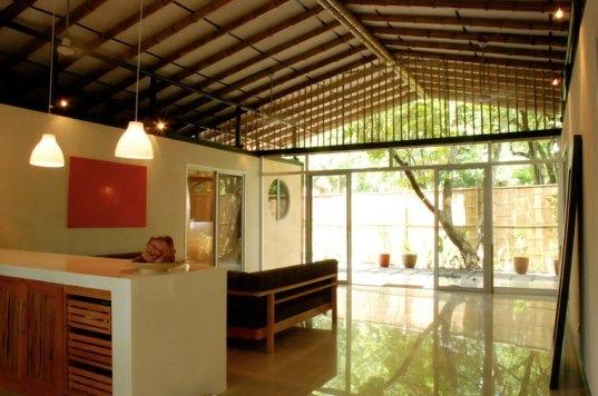 bambu construccion tropical