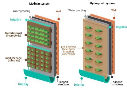jardines verticales sistemas diseño