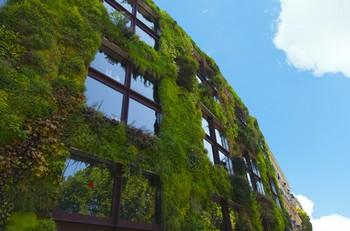 jardines verticales arquitectura pasiva