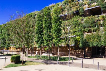 vegetacion arquitectura edificio