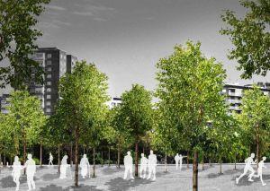 Cambio Climático Bosques urbanos