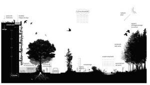 pla de la biodiversitat barcelona 2020