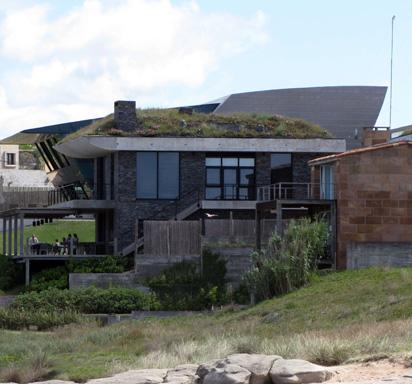 techo verde estándar de diseño