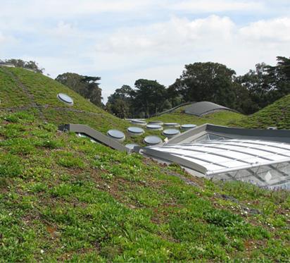 techo verde instalación